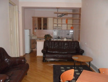 For Rent 96 sq.m. Apartment in Janashia st.