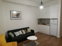 For Rent 55 sq.m. Apartment in I. Chavchavadze Ave.