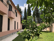For Rent 500 sq.m. Private house in Digomi 9