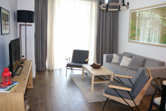 Apartment for rent on Tamarashvili street, in Domus complex. The apartment is equipped with all the necessary furniture and appliances. The building is safe and clean. Has a children's green playground. The apartment is modern  design, bright and cozy