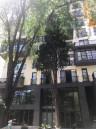 Kiralık 70 m² Apartman Dairesi in I.Nikoladze st.