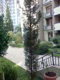 Продается 160 кв.м. Квартира в Ваке