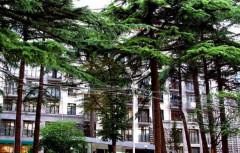 Kiralık 100 m² Apartman Dairesi in Ingorokva st.