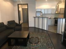 For Rent 65 sq.m. Apartment in Panaskertel-Tsitsishvilii st.