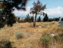 Продается 1500 кв.м. Земельный участок в Сабуртало